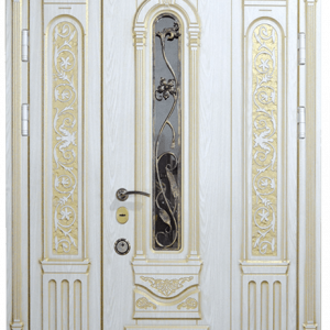 Парадная дверь DR349